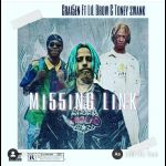 Mi55ing link ft Lil brow and Toney swank